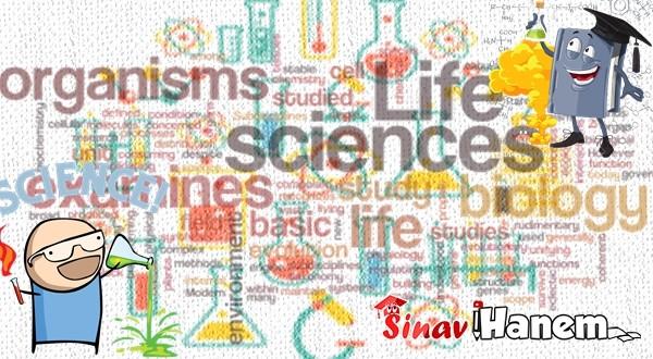 11. Sınıf Kimya Konu Anlatımlı Kitap ve Soru Bankası Önerileri