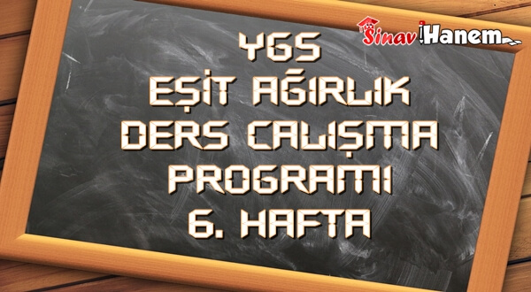 Ygs Eşit Ağırlık Tm Ders Çalışma Programı Hafta: 6