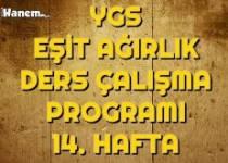Ygs Eşit Ağırlık Tm Ders Çalışma Programı Hafta: 14