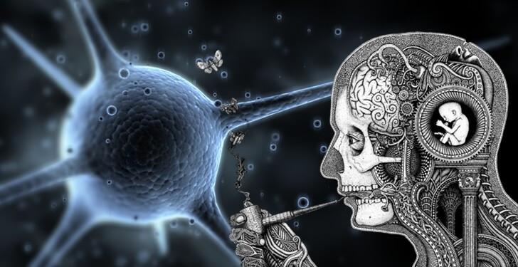 Lys Biyoloji için Konu Anlatım Videoları Önerisi