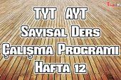 YKS (Tyt – Ayt) Sayısal (MF) Ders Çalışma Programı Hafta 12