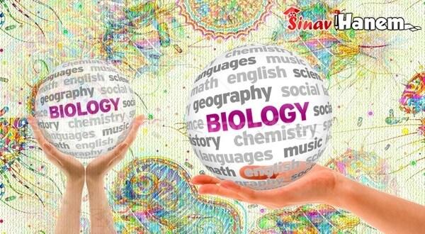 Lys Biyoloji Soru Bankası Önerileri