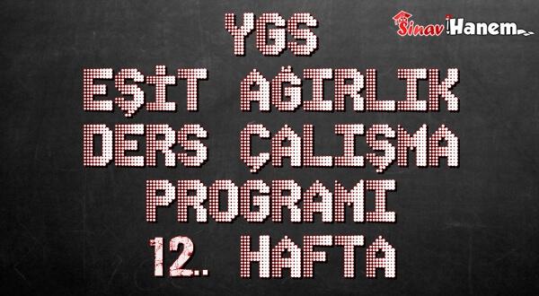 Ygs Eşit Ağırlık Tm Ders Çalışma Programı Hafta: 12