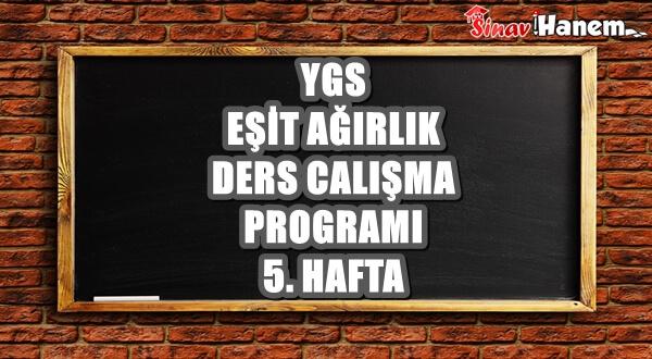 Ygs Eşit Ağırlık Tm Ders Çalışma Programı Hafta: 5