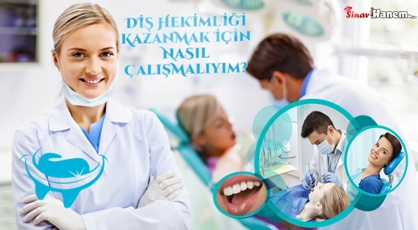 Diş Hekimliği Kazanmak İçin Nasıl Çalışmalı? Kaç Net Yapmalı?