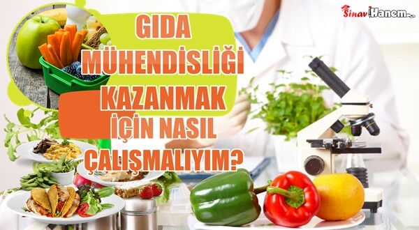 Gıda Mühendisliği Kazanmak için Nasıl Çalışmalıyım? Kaç Net Gerekli?