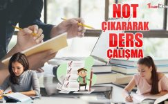 Not Çıkararak Ders Çalışmak – Yazarak Çalışmak Vakit Kaybı Mı?